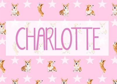 Charlotte Elizabeth Diana, Princess of Cambridge