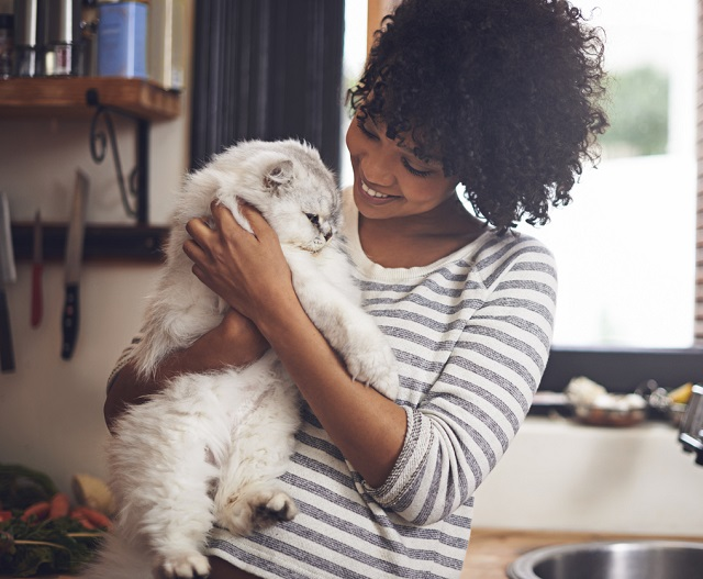 Can I change the cat litter while pregnant?