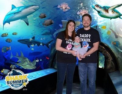Newport Aquarium Shark Week