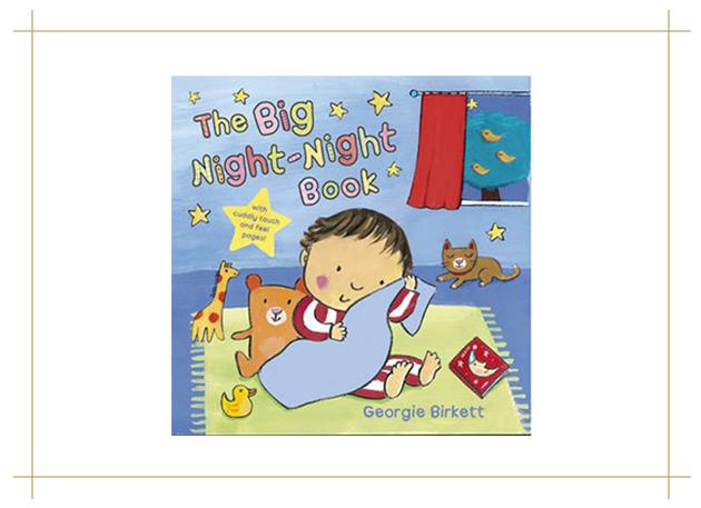 The Big Night Night Book